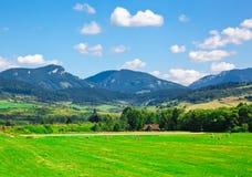 Paisaje rural hermoso del verano Fotografía de archivo