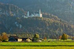 Paisaje rural sereno con las vertientes de la vaca en el prado con vistas al castillo de Neuschwanstein en Baviera imagen de archivo
