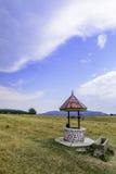 Paisaje rural: solo viejo bien en el campo Fotos de archivo libres de regalías