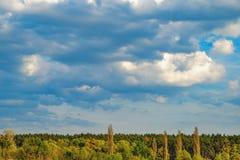 Paisaje rural ucraniano con el bosque en horizonte Fotos de archivo libres de regalías