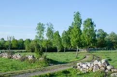 Paisaje rural verde Imagen de archivo libre de regalías