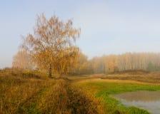 Paisaje ruso del otoño Fotografía de archivo