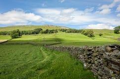 Paisaje seco de la pared de piedra - valles de Yorkshire, Inglaterra Imagenes de archivo