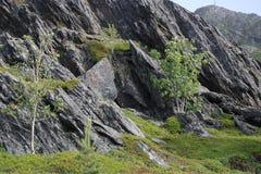 Paisaje septentrional Imágenes de archivo libres de regalías