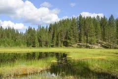 Paisaje septentrional. Finlandia fotografía de archivo libre de regalías