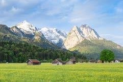 Paisaje sereno bávaro con las montañas nevosas de las montañas y el pasto floreciente de la primavera en valle Fotos de archivo libres de regalías