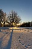 Paisaje soleado del invierno Imagen de archivo