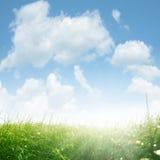 Paisaje soleado en primavera Fotos de archivo