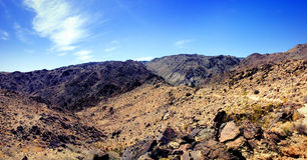 Paisaje solitario del desierto de Joshua Tree National Park Fotografía de archivo