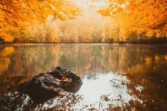 Paisaje suave del otoño de la visión, parque otoñal, naturaleza de la caída Imagenes de archivo