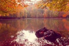 Paisaje suave del otoño de la visión, parque otoñal, naturaleza de la caída Fotos de archivo