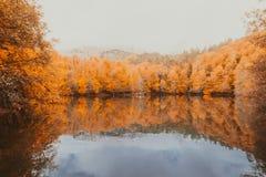 Paisaje suave del otoño de la visión, parque otoñal, naturaleza de la caída Imágenes de archivo libres de regalías