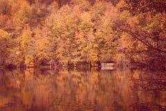 Paisaje suave del otoño de la visión, parque otoñal, naturaleza de la caída Fotos de archivo libres de regalías