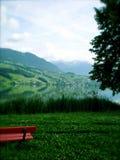 Paisaje suizo Fotos de archivo libres de regalías