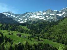 Paisaje suizo de las montan@as Fotos de archivo