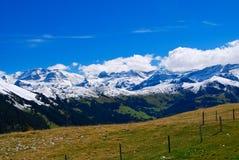 Paisaje suizo de las montan@as Imágenes de archivo libres de regalías