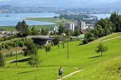 Paisaje suizo idílico de la montaña con el lago Zurich Foto de archivo libre de regalías