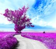 Paisaje surrealista y árbol Foto de archivo