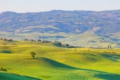 Paisaje típico de Toscana Imagen de archivo