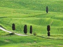 Paisaje típico de Toscana Imagenes de archivo
