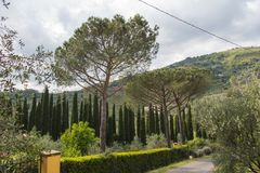 Paisaje típico de Toscana, Italia con las colinas, los árboles verdes y las nubes en fondo foto de archivo