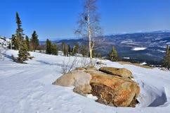 Paisaje temprano brillante de la primavera en las montañas Imagen de archivo libre de regalías