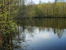 Paisaje temprano de la primavera con reflexiones del agua Fotos de archivo libres de regalías