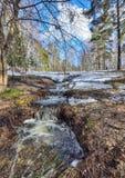 Paisaje temprano de la primavera en bosque con nieve y arroyos de fusión Fotografía de archivo