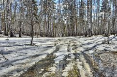 Paisaje temprano de la primavera en bosque con nieve y el arroyo de fusión Foto de archivo