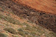 Paisaje Tenerife Imagenes de archivo