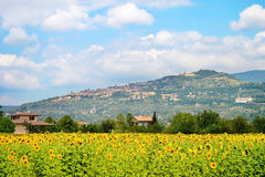 Paisaje, Toscana Val D'Orcia fotos de archivo
