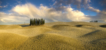 Paisaje, Toscana Val D'Orcia Imagen de archivo