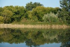 Paisaje tranquilo con un lago y los árboles Imágenes de archivo libres de regalías