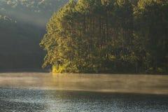Paisaje tranquilo del bosque de la orilla del lago por mañana en la punzada-ung, en Mae Hong Son, Tailandia Fotografía de archivo libre de regalías