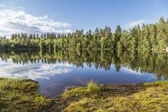 Paisaje tranquilo hermoso de la charca de Finlandia Foto de archivo