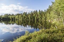 Paisaje tranquilo hermoso de la charca de Finlandia Foto de archivo libre de regalías