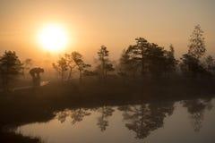 Paisaje tranquilo hermoso del lago brumoso del pantano imagen de archivo libre de regalías