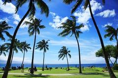 Paisaje tropical Fotografía de archivo