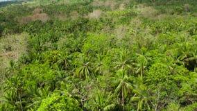 Paisaje tropical con la selva tropical Camiguin, Filipinas almacen de metraje de vídeo
