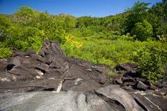 Paisaje tropical con las rocas del granito Foto de archivo libre de regalías