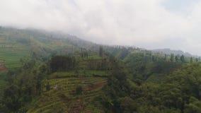 Paisaje tropical con las tierras de los granjeros en las monta?as almacen de video