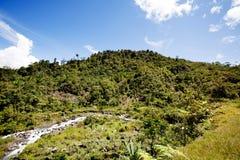 Paisaje tropical de la montaña imágenes de archivo libres de regalías