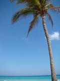 Paisaje tropical de la playa Fotos de archivo