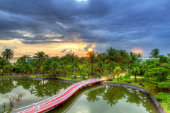 Paisaje tropical de palmeras en la puesta del sol Imagenes de archivo