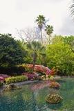 Paisaje tropical del agua Fotografía de archivo