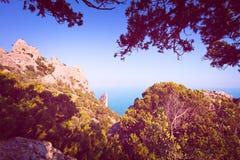 Paisaje tropical hermoso con el top de la montaña que pasa por alto las rocas y el mar, enmarcado por las ramas del pino, teñidas Fotos de archivo