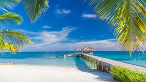 Paisaje tropical hermoso Playa y palmeras de la isla de Maldivas Bandera tropical perfecta