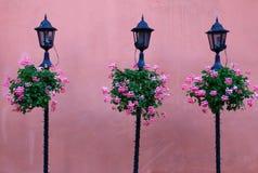 Paisaje urbano con las paredes rosadas, las flores y las linternas elegantes Imágenes de archivo libres de regalías