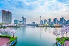 Paisaje urbano de Corea con el mundo y Cherry Blossom de Lotte Imagen de archivo