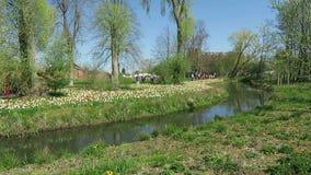 Paisaje urbano de la ciudad Wittstock Dosse en Alemania Gente que camina a trav?s de peque?o parque con fluir de la corriente Flo almacen de video